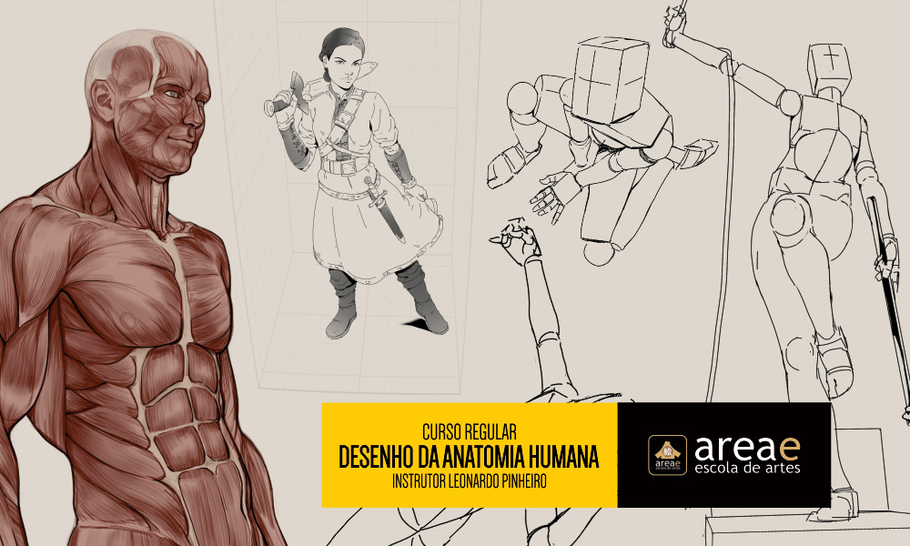 Curso De Desenho Da Estrutura Da Anatomia Humana Areae